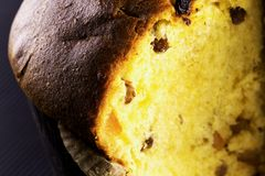 Panettone in close up Royalty Free Stock Photo