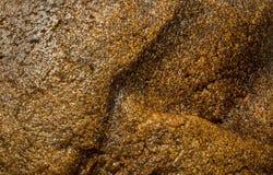 Panez la texture Image libre de droits