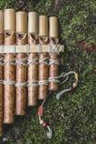 Panflute de madeira Imagem de Stock