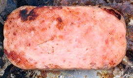Panfried mystery meat Royalty Free Stock Photos