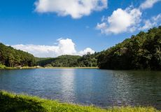 Pang-Oung, Maehongson, Thailand. Lake in a summer forest in mae hong son ,Thailand Royalty Free Stock Image