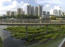Pang Sua Pond in Bukit Panjang, Singapore Stock Images