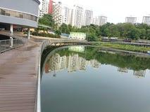 Pang Sua Pond i Bukit Panjang, Singapore Arkivfoton