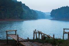 Pang Ung Forestry Plantations, Maehongson, Tailândia fotografia de stock royalty free