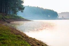 Pang Ung Forestry Plantations, Maehongson, Tailândia imagem de stock