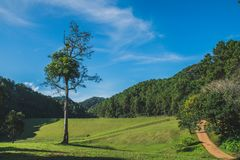 Pang Ung Mae Aong Province, Thailand Royaltyfria Bilder