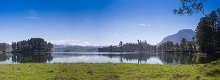 Pang ung , reflection of pine tree in a lake Stock Photos