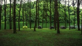 Pang Ung resting place with a tent. Pine garden with tent area Is a resting place that is surrounded by green nature and has cool weather, with many sprawling stock images