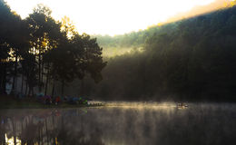 Pang Ung sjön sörjer Forest Park Royaltyfria Bilder