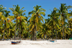 Pangane plaża, Mozambik Obrazy Royalty Free