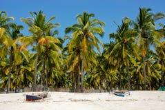 Pangane strand, Mocambique Royaltyfria Bilder