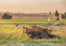 Pangasinan, Filippijnen: Waar de Zonsondergang, het Eilandleven, en de Landbouwbedrijven combineren royalty-vrije stock fotografie