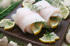 Pangasius Stock Photos
