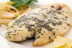 Pangasius fillet Royalty Free Stock Image