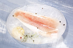 Pangasius fillet. Stock Photo