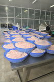 Pangasius-Fischfilets warten, in einer Verarbeitungsanlage der Meeresfrüchte im der Mekong-Delta verarbeitet zu werden Stockfotos