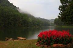 PangAung nordliga Thailand Lakeview arkivfoton