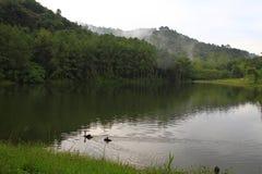 PangAung nordliga Thailand Lakeview arkivbild