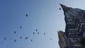 pangoda grande ayutthaya Tailandia con los pájaros Imagen de archivo libre de regalías