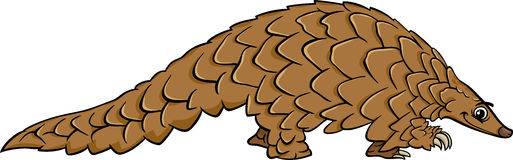 Pangolin animal cartoon illustration Royalty Free Stock Photo