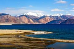 Pangong湖在拉达克,查谟和克什米尔状态,印度 图库摄影