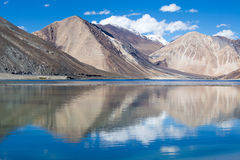 Pangong湖,拉达克,印度 免版税库存图片