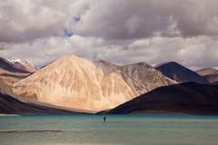 Pangong jezioro w Ladakh Obrazy Royalty Free