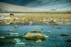 Pangong Lake, is an endorheic lake Stock Photo