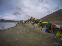 Pangong Lake Royalty Free Stock Photo