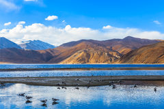 Pangong Lake in the morning Stock Photography