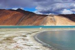 Pangong sjö Arkivfoton