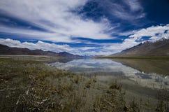 Pangong sjö, Jammu & Kashmir, Indien arkivfoton