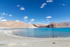 Pangong sjö, Ladakh Arkivbilder