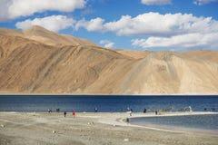 Pangong sjö Ladakh, Indien Fotografering för Bildbyråer