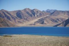 Pangong sjö Ladakh, Indien Royaltyfri Fotografi