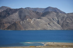 Pangong sjö Ladakh, Indien Royaltyfria Bilder