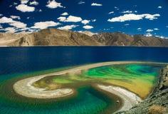 Pangong sjö, Ladakh, Indien arkivfoto