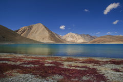 Pangong Tso Stock Photos