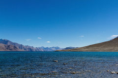 Pangong Tso sjö Arkivbild