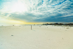 Panhandle beach. Beautiful white powder sand beach in the Florida panhandle in the late afternoon royalty free stock photos