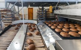 Pani al forno sulla linea di produzione al forno Immagini Stock Libere da Diritti