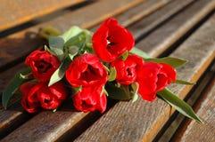 pani czerwony kwiat Obrazy Royalty Free