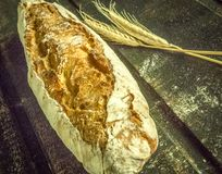Pani italiani fatti a mano fatti da farina italiana immagini stock libere da diritti