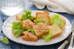 Pani tostati con patè sul piatto bianco Immagine Stock Libera da Diritti