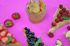 pani tostati deliziosi differenti su fondo cremisi verde o rosa Panino sano per la prima colazione o lo spuntino Pane tostato con immagine stock