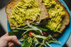 Pani tostati ed avocado fotografia stock libera da diritti