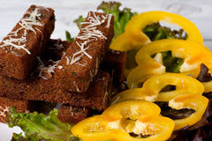 Pani tostati fritti con formaggio, aglio e le spezie Immagine Stock