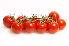 Panicle mit Tomaten stockbild