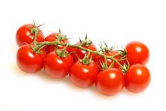 Panicle mit Tomaten lizenzfreie stockfotos