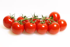 Panicle with tomatoes Stock Image